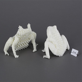 Prototip hayvan modelleri