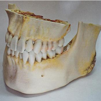3D arkeoloji modelleri