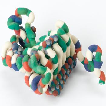 3D DNA modeli