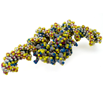 prototip moleküller